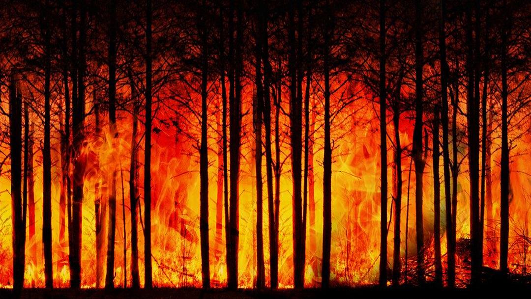 En 2300 viviremos en temperaturas de un estado de efecto invernadero provocadas por el calentamiento global