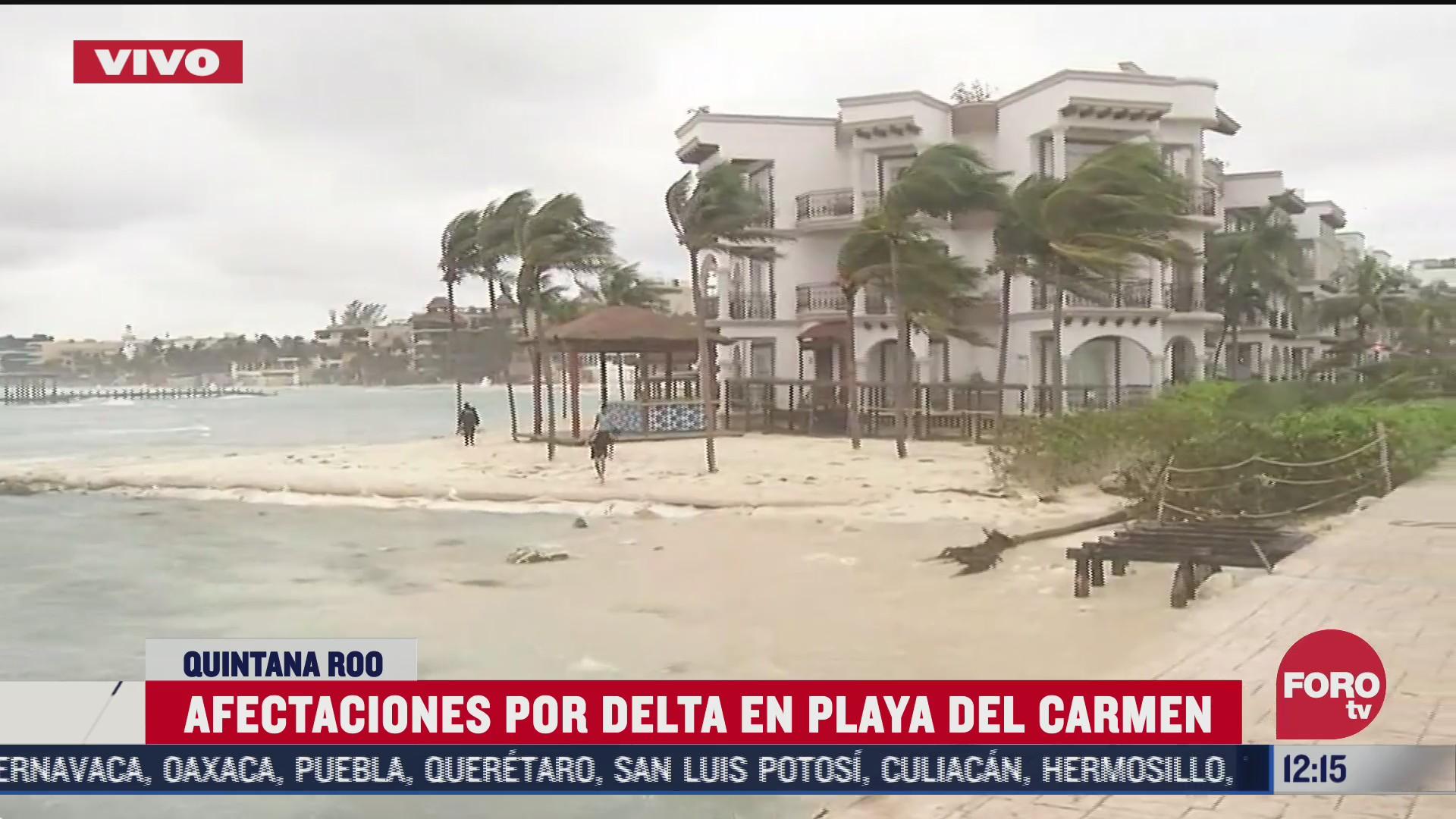 inundaciones postes y arboles caidos en playa del carmen por delta