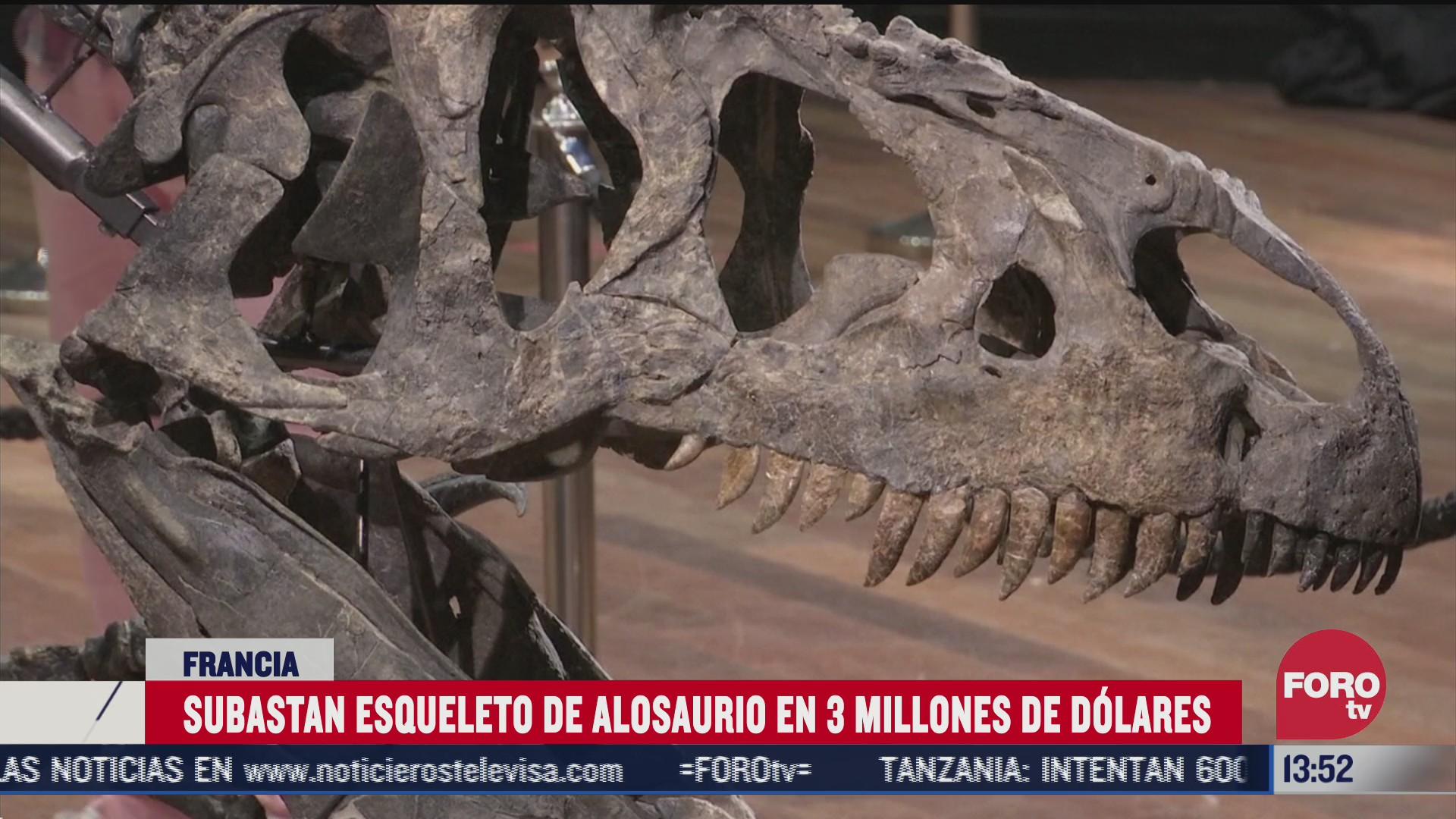 subastan esqueleto de alosaurio en 3 millones de dolares en francia