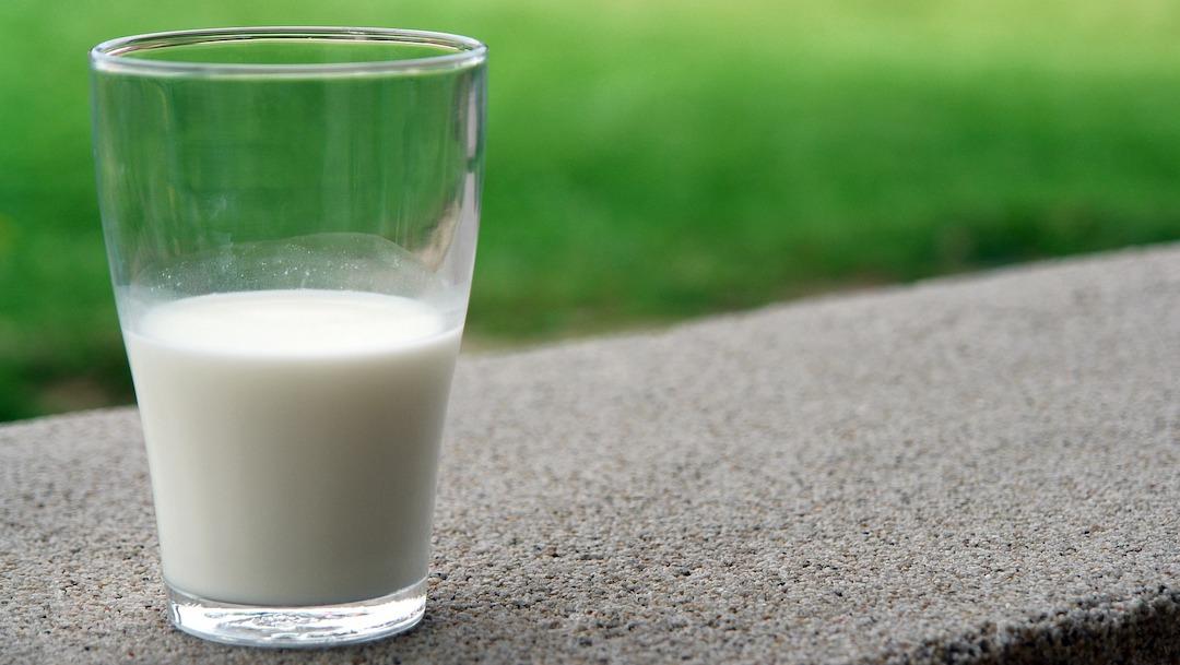 ¿Debes tomar lactosa si no eres intolerante?