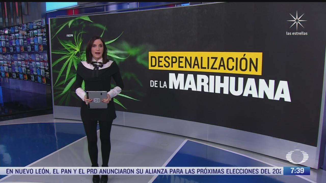 cuales son los principales puntos de la ley sobre despenalizacion de la marihuana