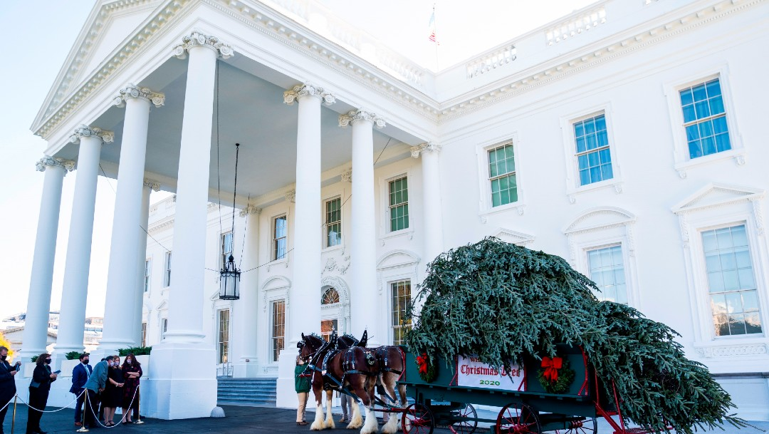 La Casa Blanca planea festejos navideños pese a advertencias durante pandemia