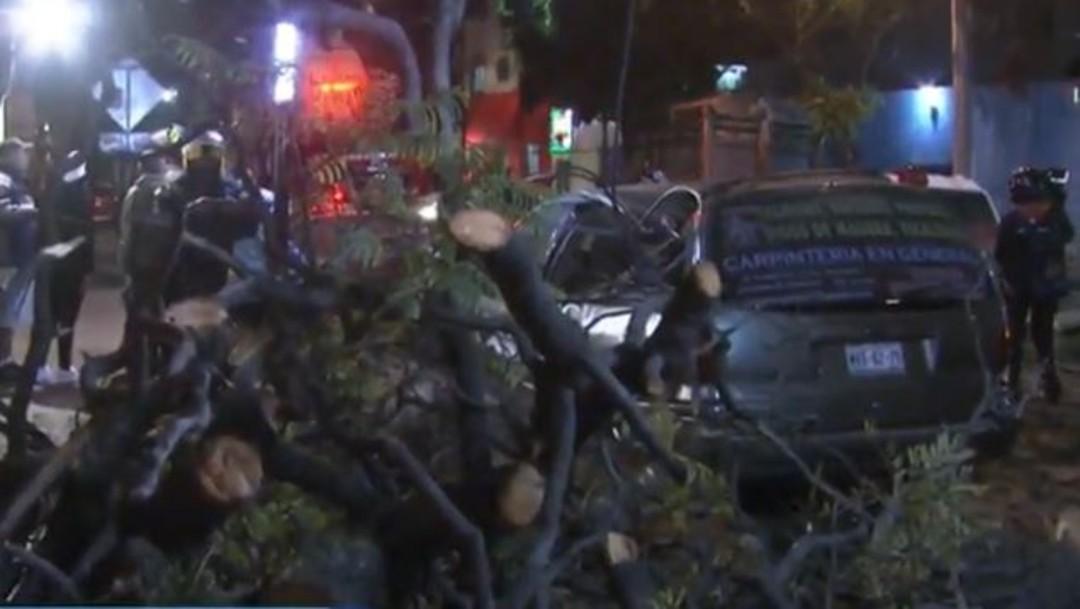 Cae árbol sobre camioneta en la CDMX