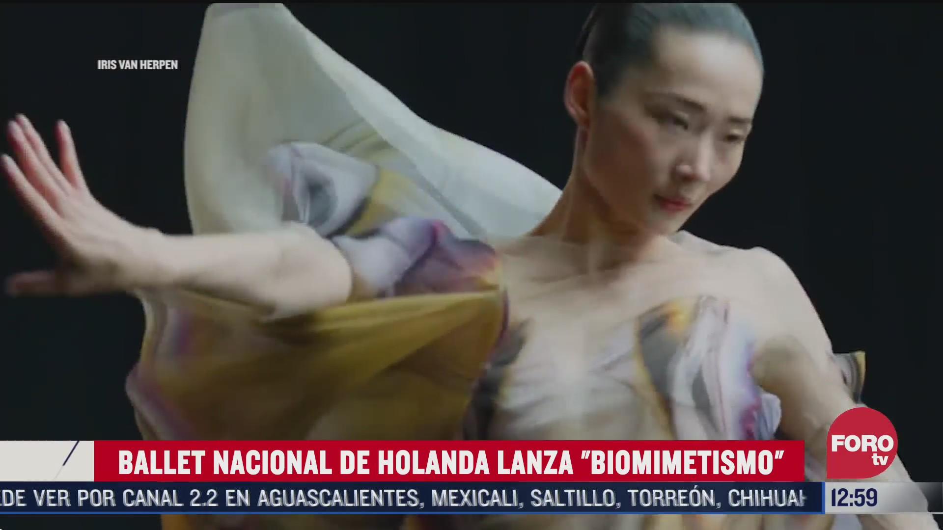 ballet nacional de holanda lanza biomimetismo