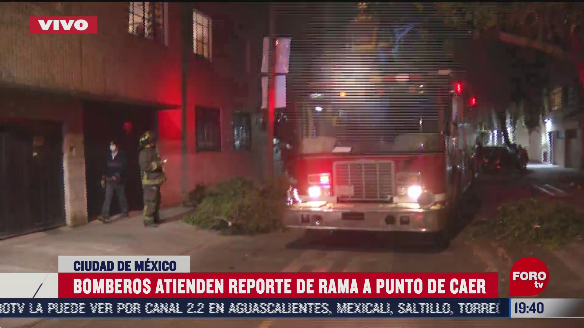 bomberos de la cdmx retiran rama sobre cables de alta tension en la colonia portales