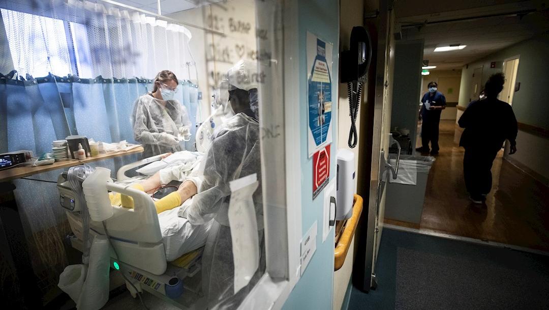 El número de muertes relacionadas con la COVID-19 en California, Estados Unidos, llegó a 40.238