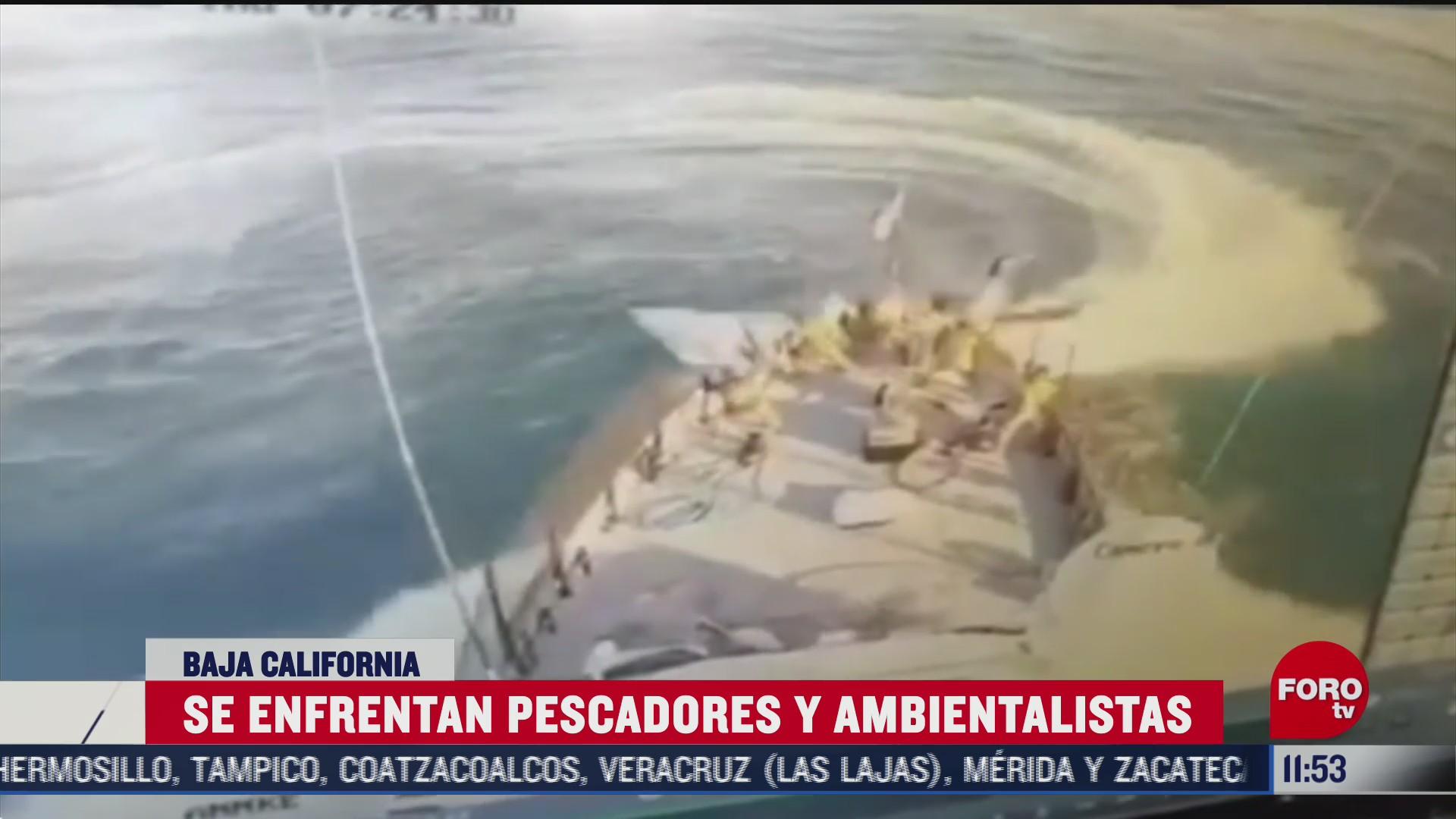 pescadores agreden a la marina tras operativo contra pesca de la vaquita marina