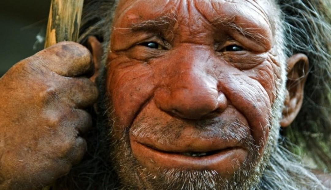 Neandertal desapareció tras inversión de polos magnéticos