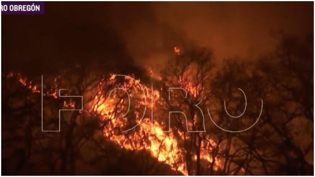 Incendio Bosques de Tarango