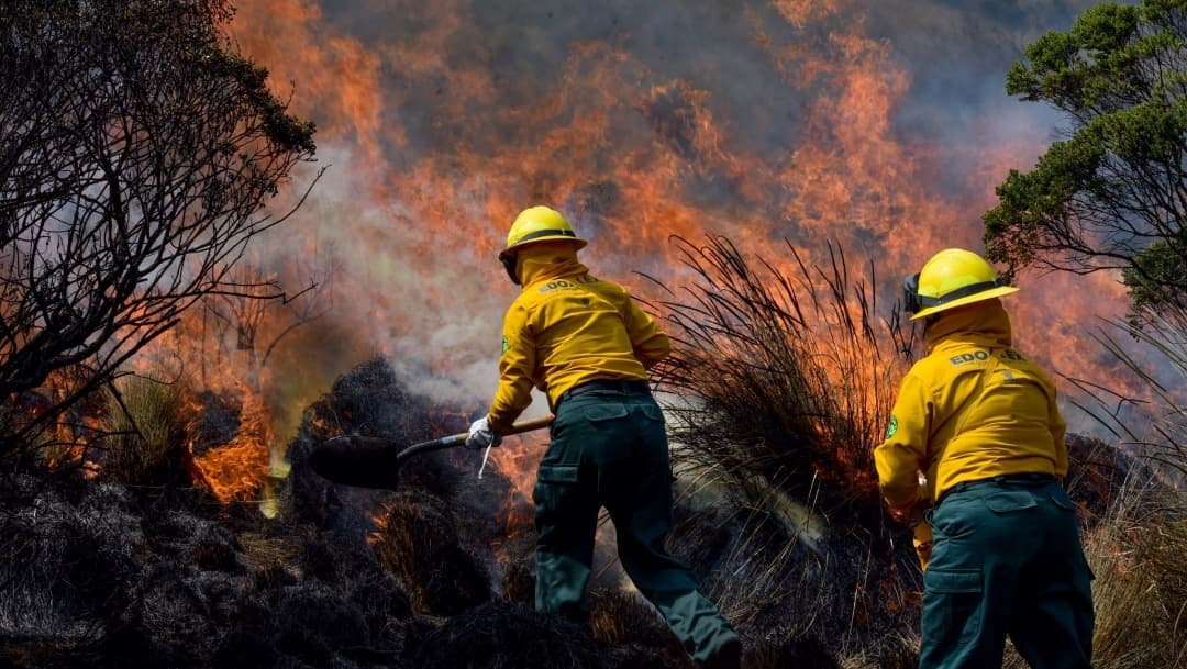 Temporada de incendios forestales se agravará debido a La Niña