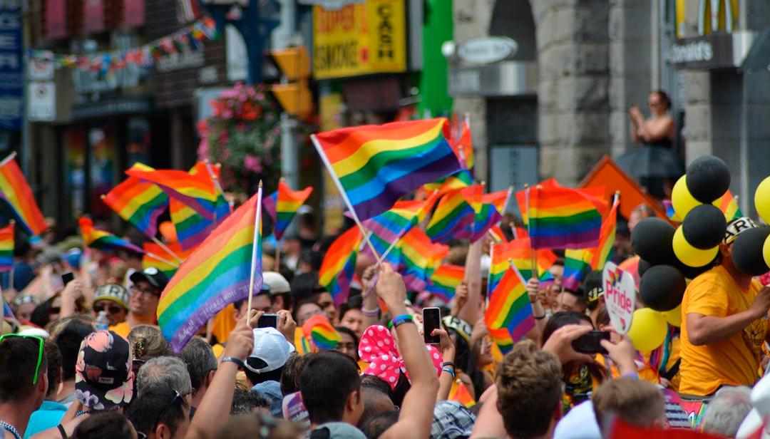 La homofobia estaría relacionada a un bajo coeficiente intelectual dice estudio