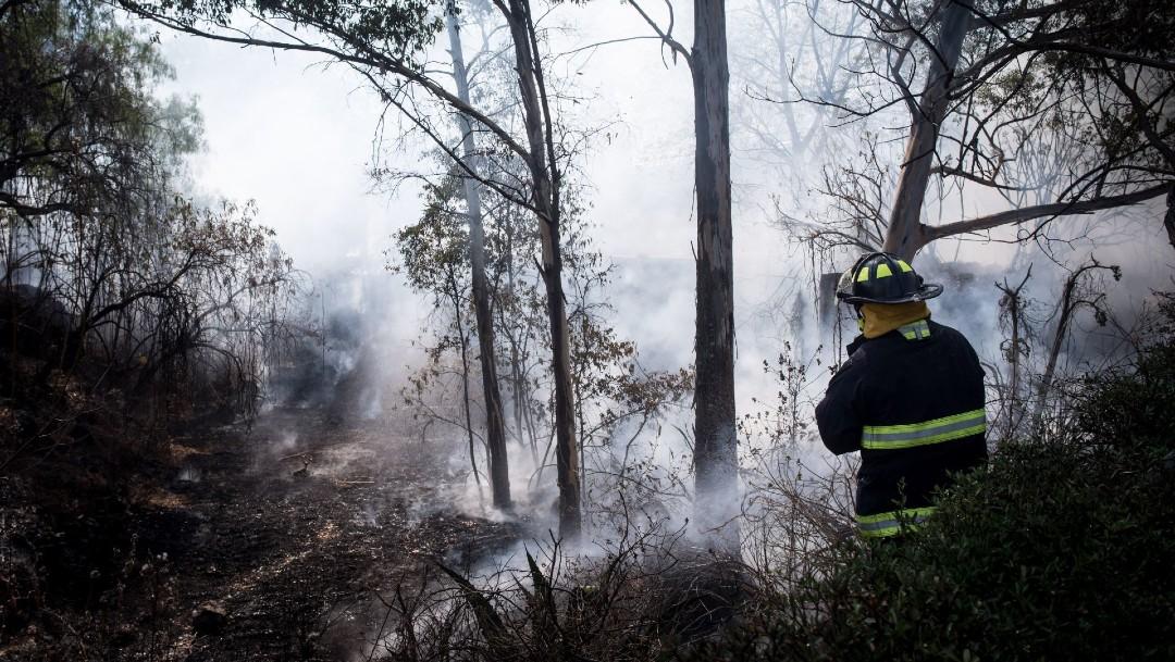 Incendio en pastizales de CU fue provocado por encapuchados: UNAM