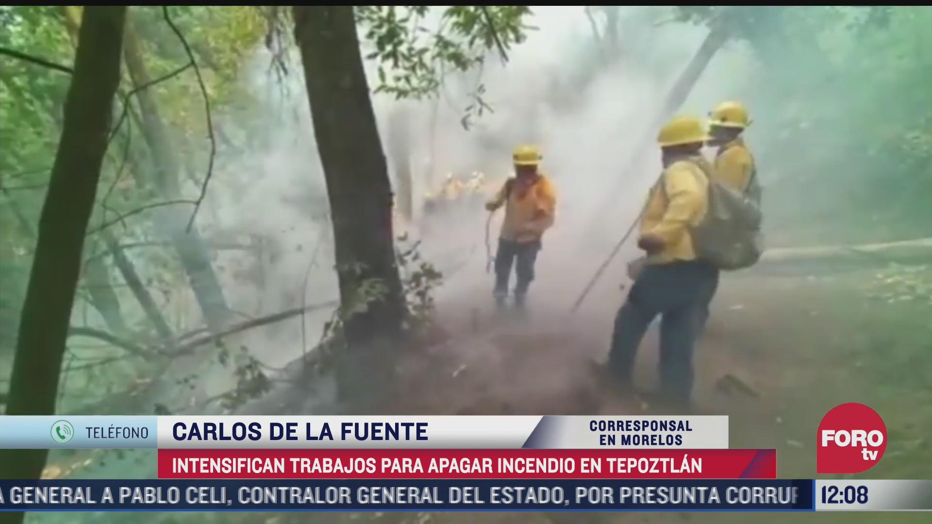 brigadistas trabajan para sofocar incendio forestal en tepoztlan