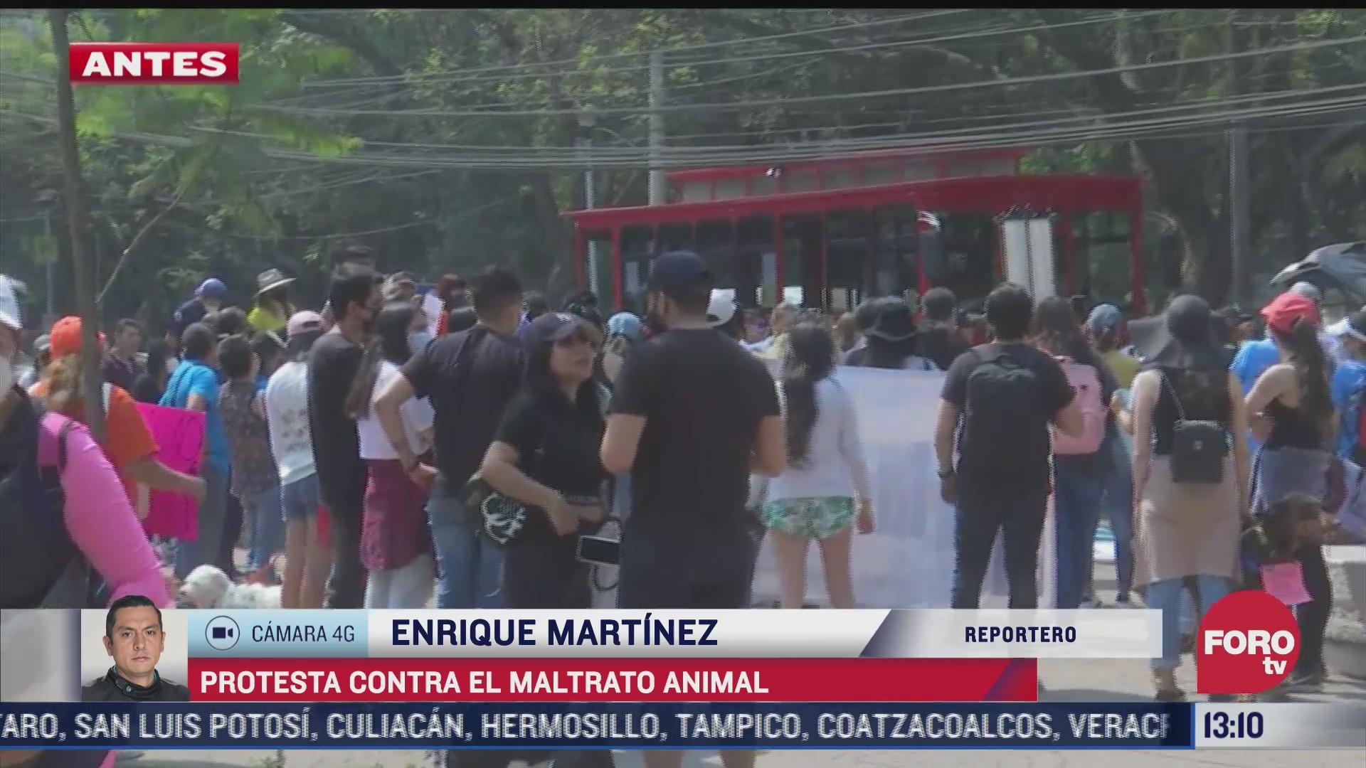 capitalinos protestan contra maltrato animal y el asesinato del perro rodolfo corazon