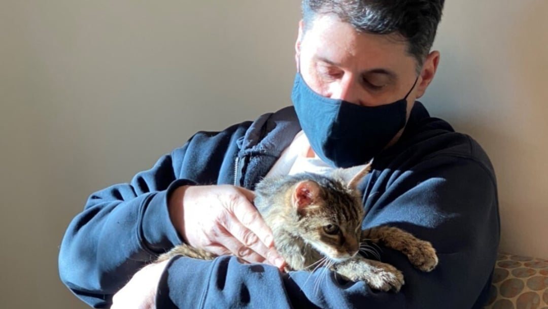 Conmueve reunión entre gatita perdida por 15 años y su dueño