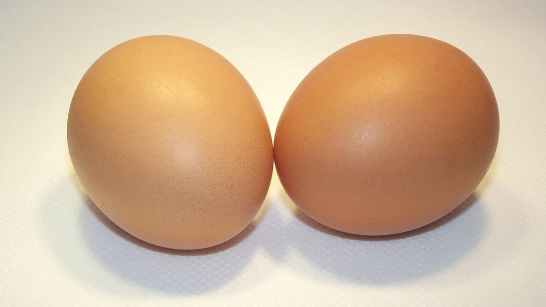 Comer dos huevos al día no hace daño: UNAM: