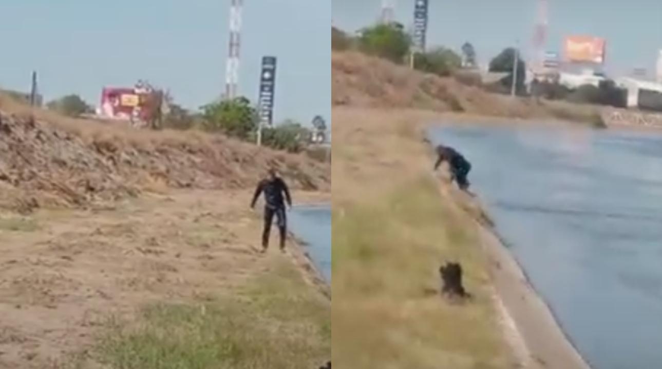 Video: Policía salva a perrito de ahogarse en Sinaloa