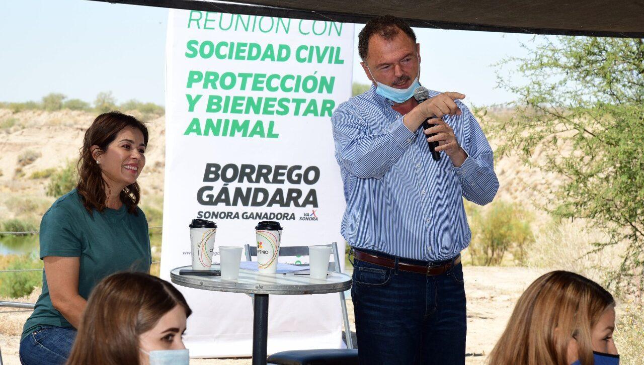 Ernesto Gándara se reunió con asociaciones para un mayor cuidado de animales en el estado de Sonora