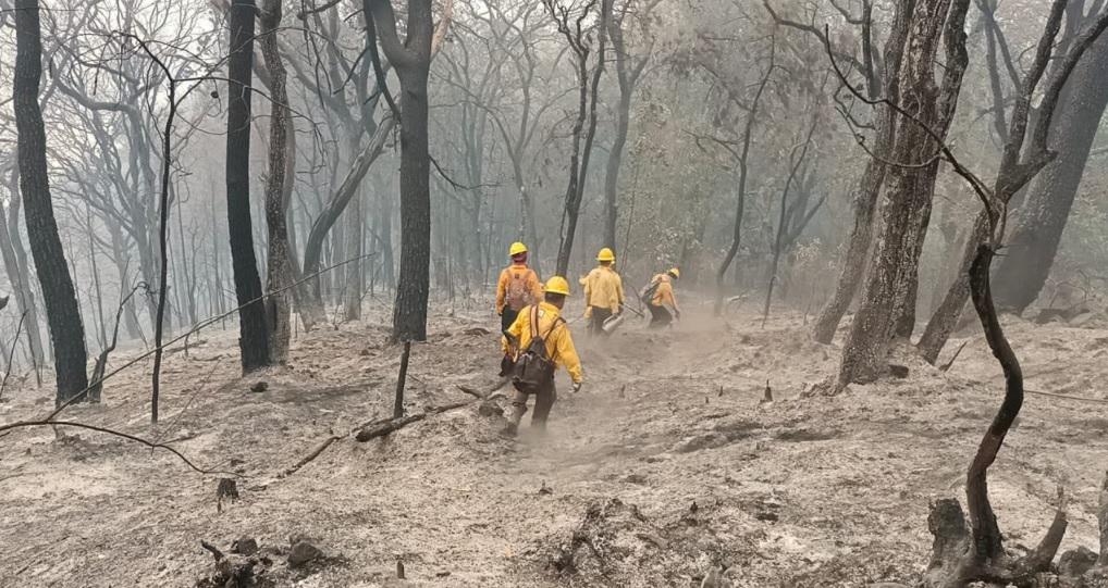 Brigadistas-combaten-incendio-forestal-en-Tepoztlán-Morelos