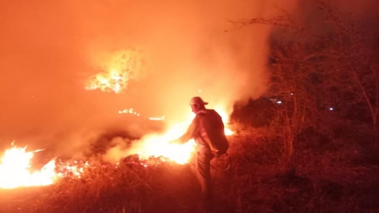 México tiene 73 incendios forestales activos