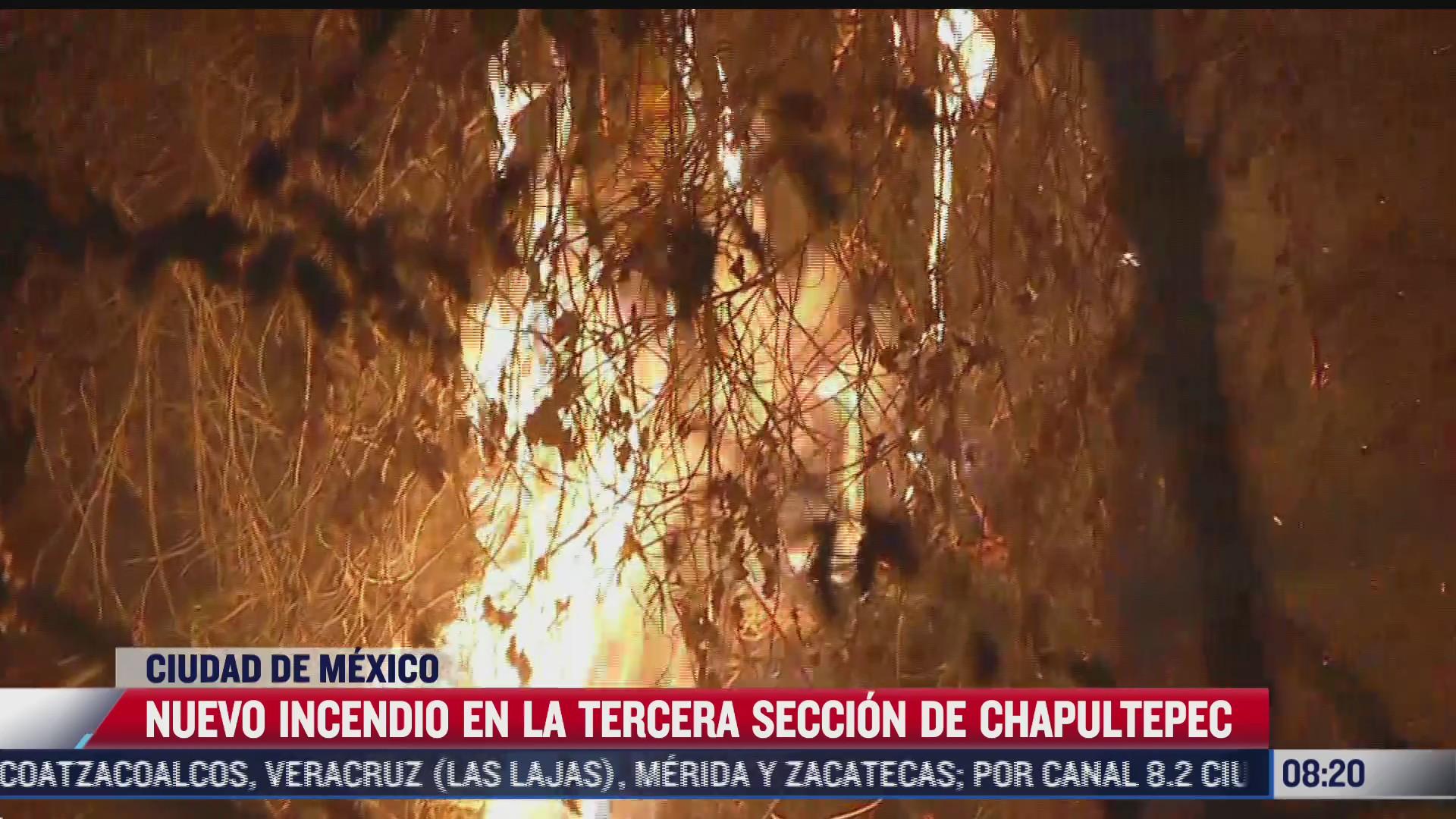 nuevo incendio en tercera seccion del bosque de chapultepec