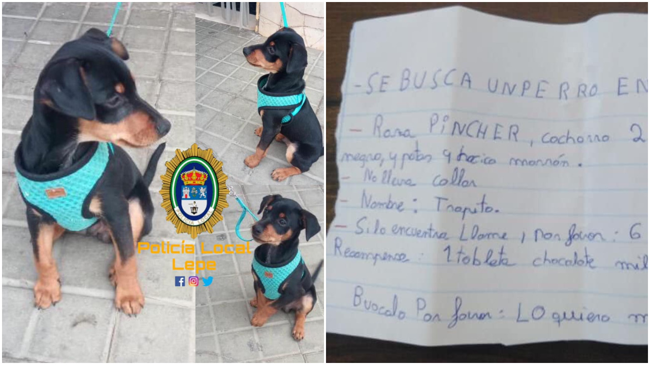 perro perdido, niña, nota de rescate, policía, España, Facebook