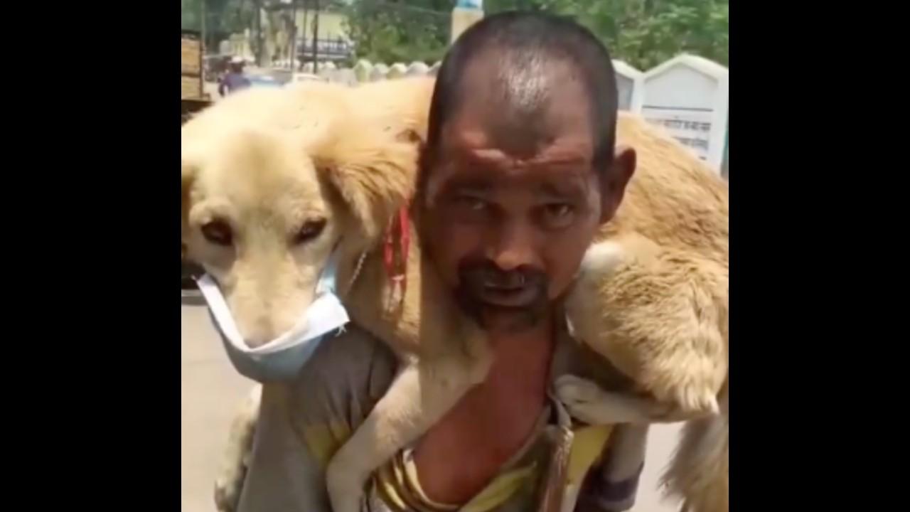 Hombre se quita su único cubrebocas para ponerselo a su perrito