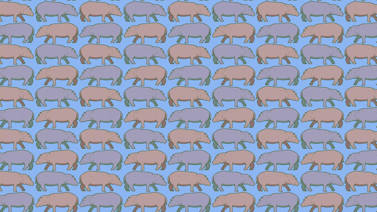 Encuentra los rinocerontes entre los hipopótamos, ilustración