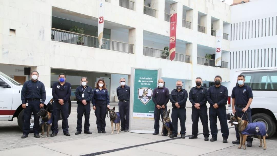 Jubilan binomios caninos de Aduanas, eje importante del combate a la corrupción