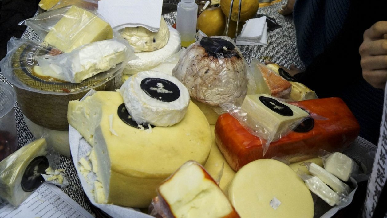 UNAM logra generar electricidad con residuos de vino y queso