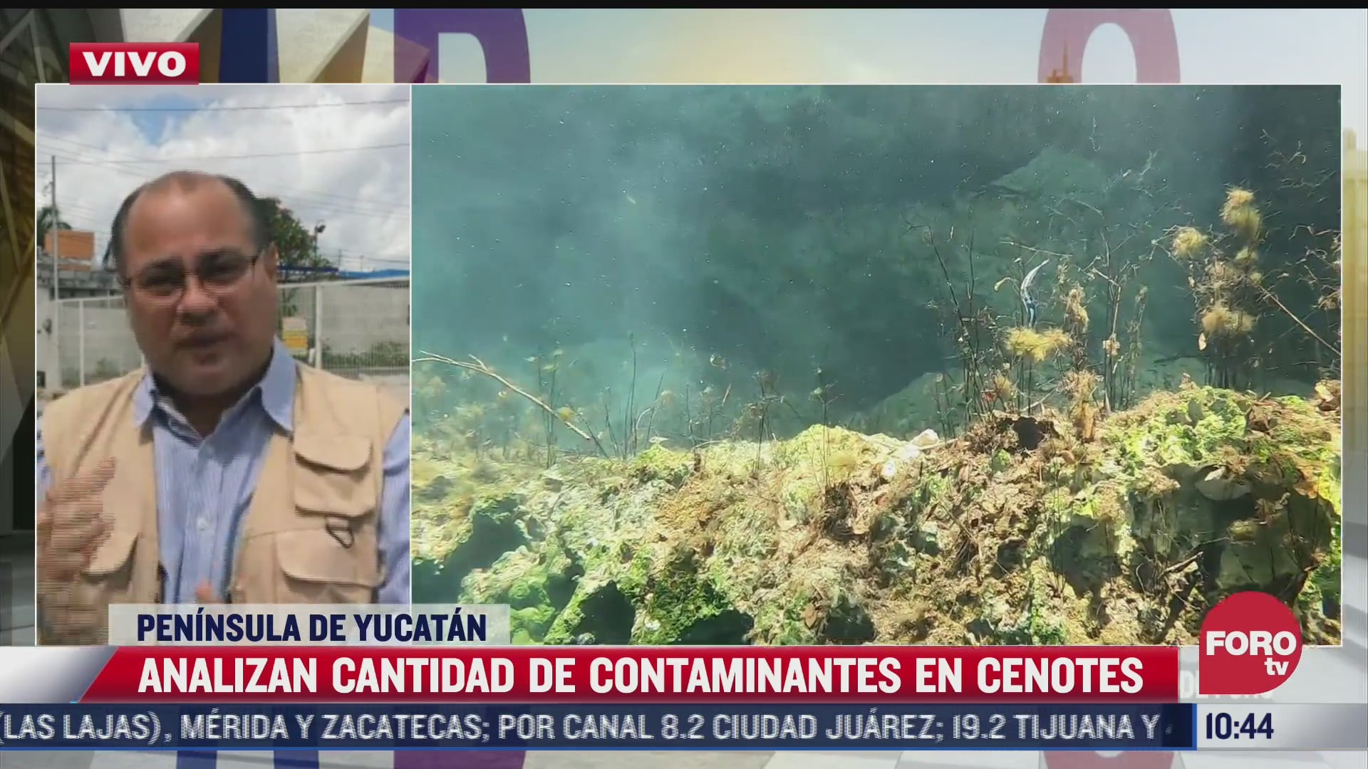 analizan cantidad de contaminantes en cenotes de yucatan