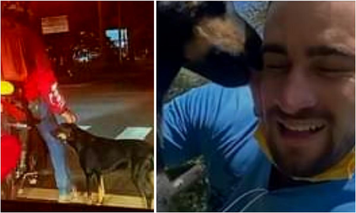 Repartidor adopta a perrito callejero que se encariño con el