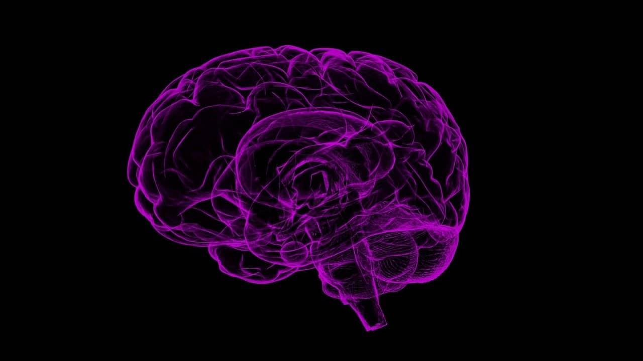 COVID-19 reduce materia gris del cerebro