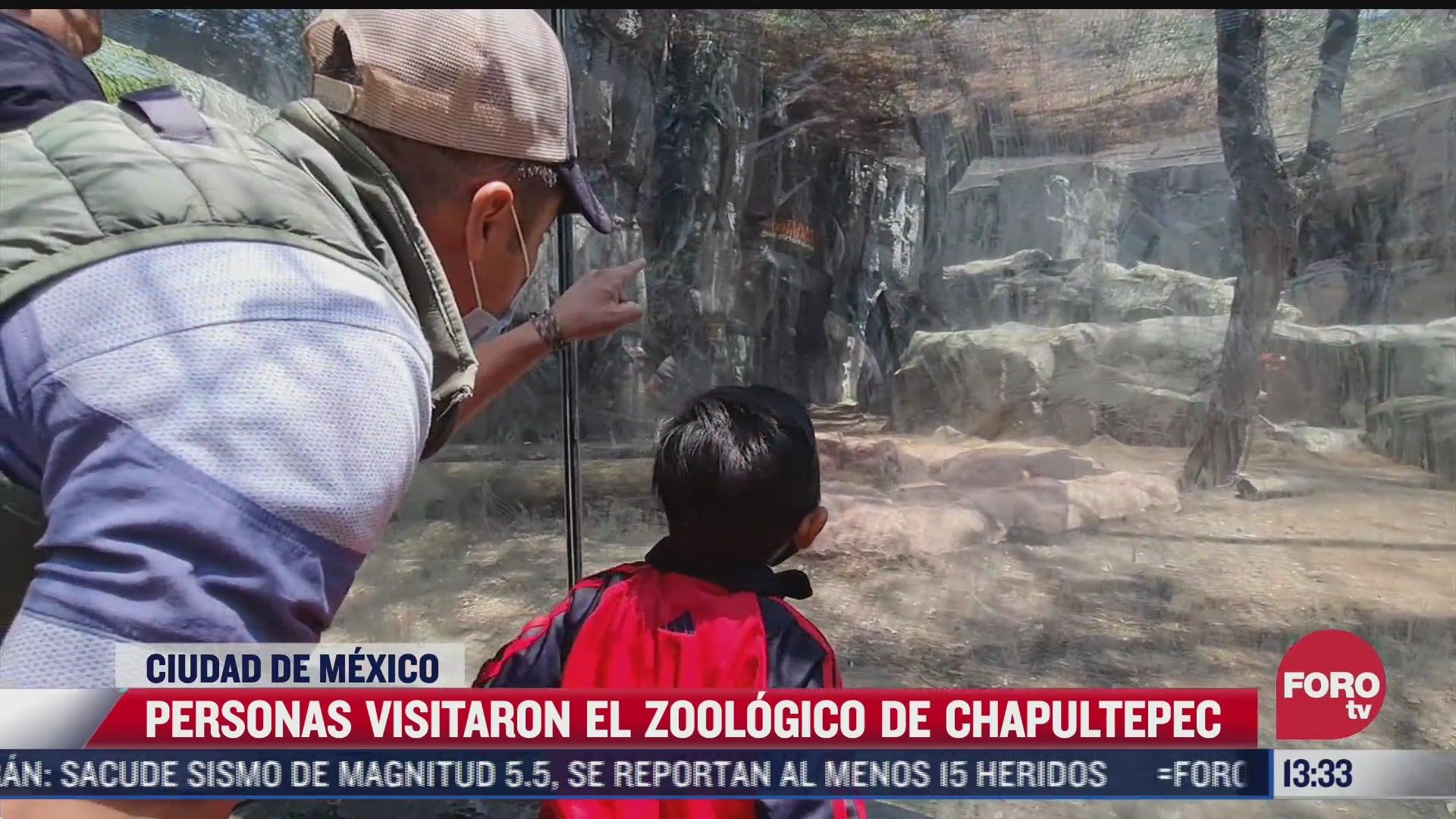 cientos de personas acuden a visitar el zoologico de chapultepec