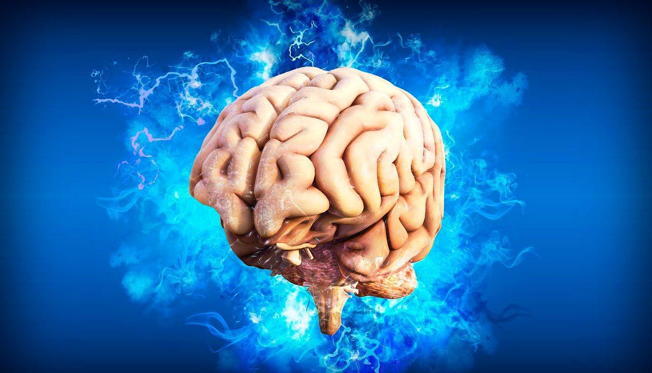 Efectos que tiene el consumo en exceso de pornografía en el cerebro