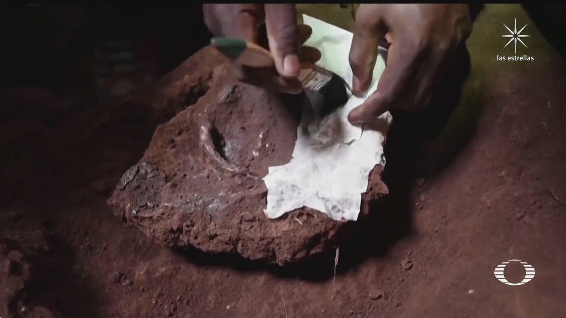 descubren en kenia el entierro mas antiguo de africa