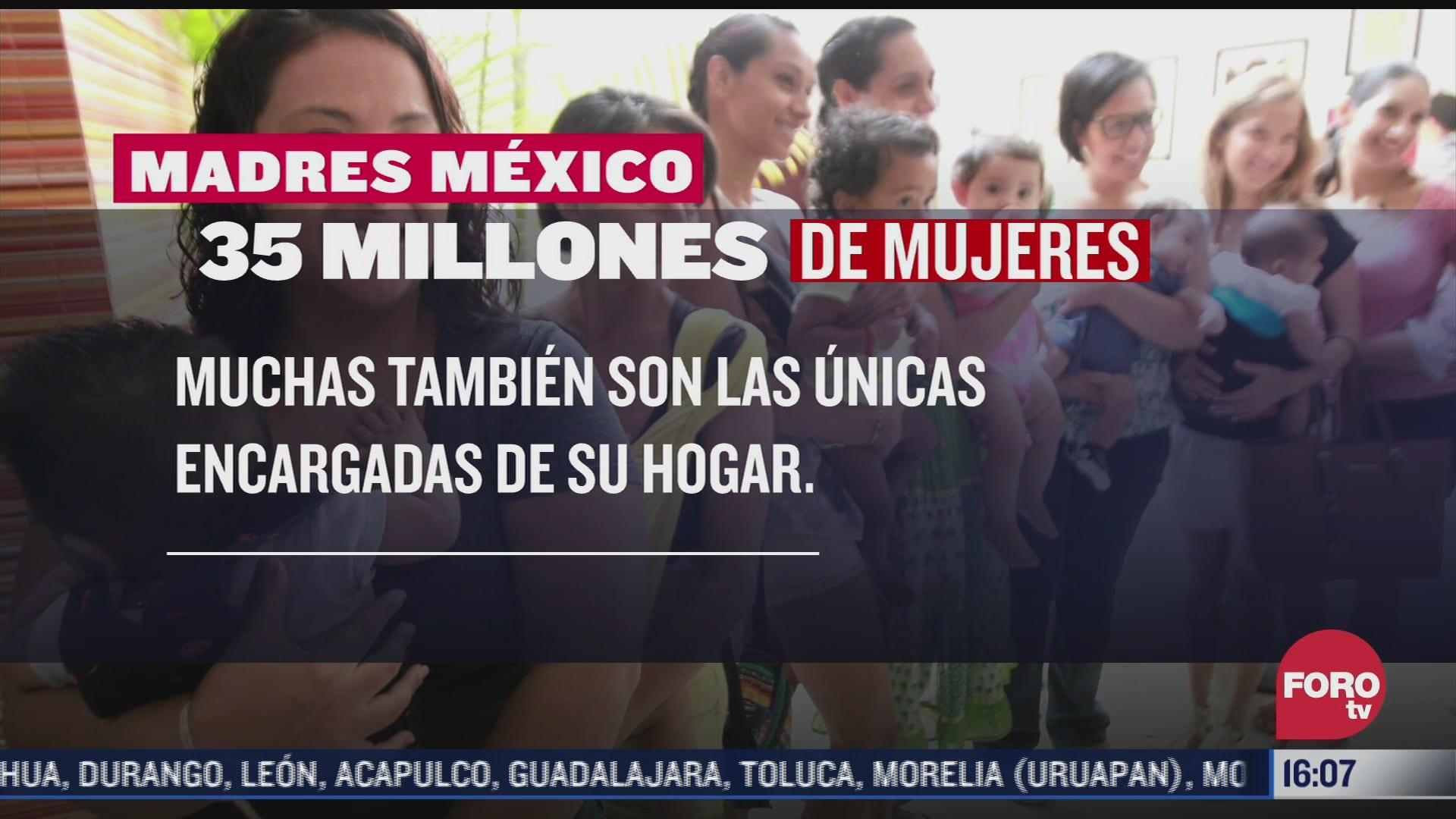 el 30 de hogares mexicanos tiene a una mujer como jefa de familia