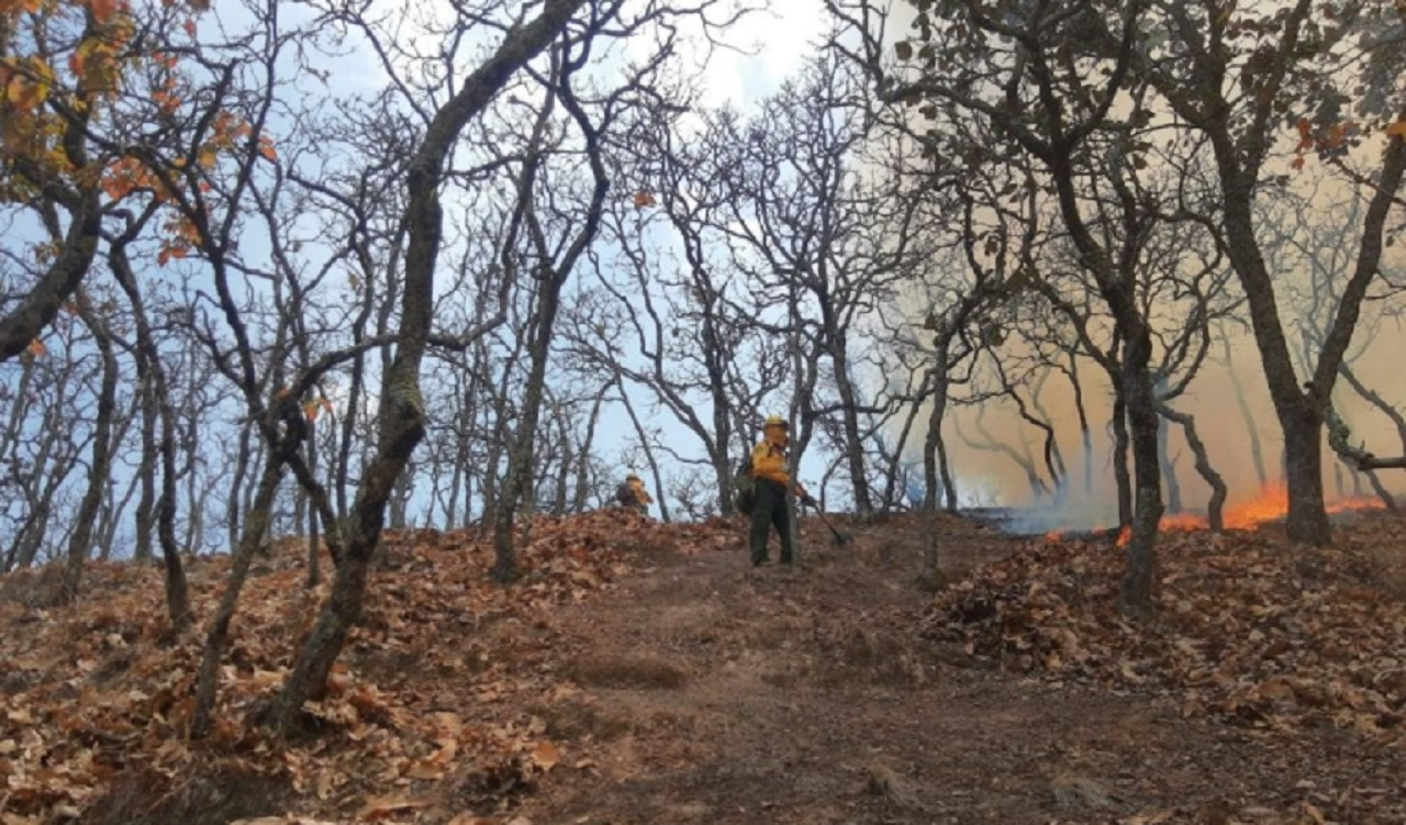 Helicópteros-ayudan a-combatir-incendio-forestal-en-Guerrero
