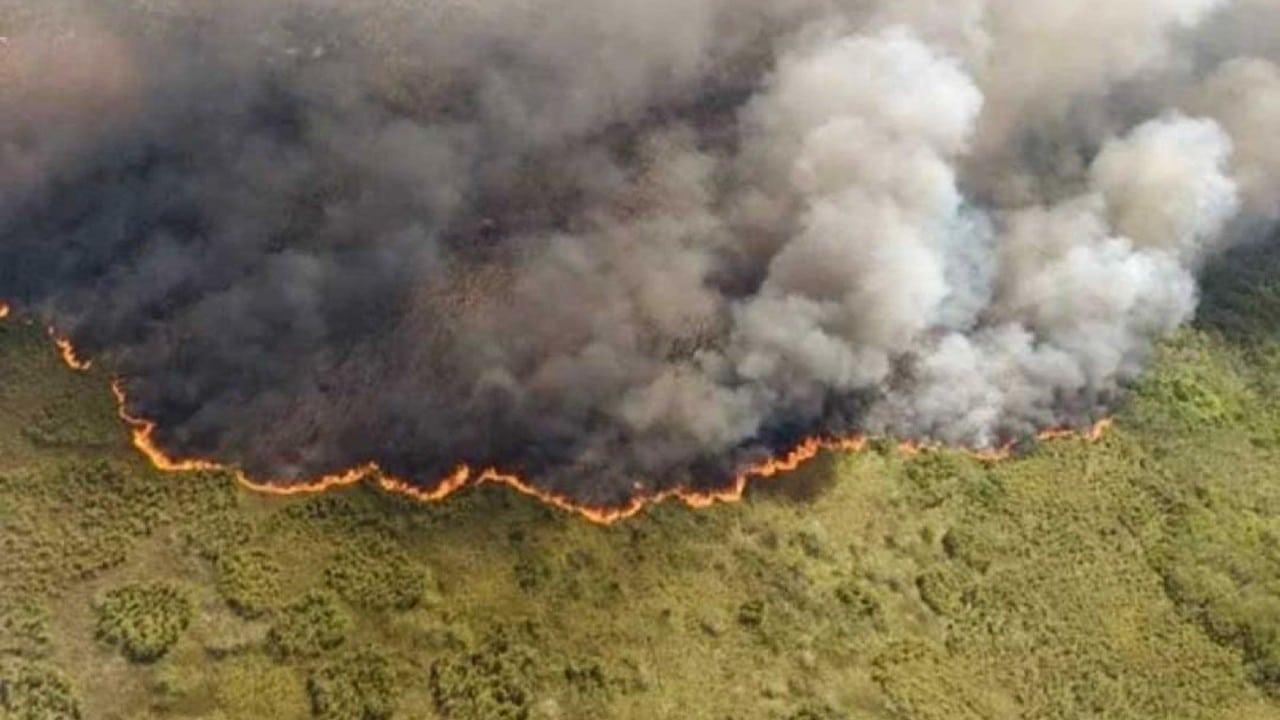 Continúan-los-incendios-forestales-en-Quintana-Roo-y-Yucatán