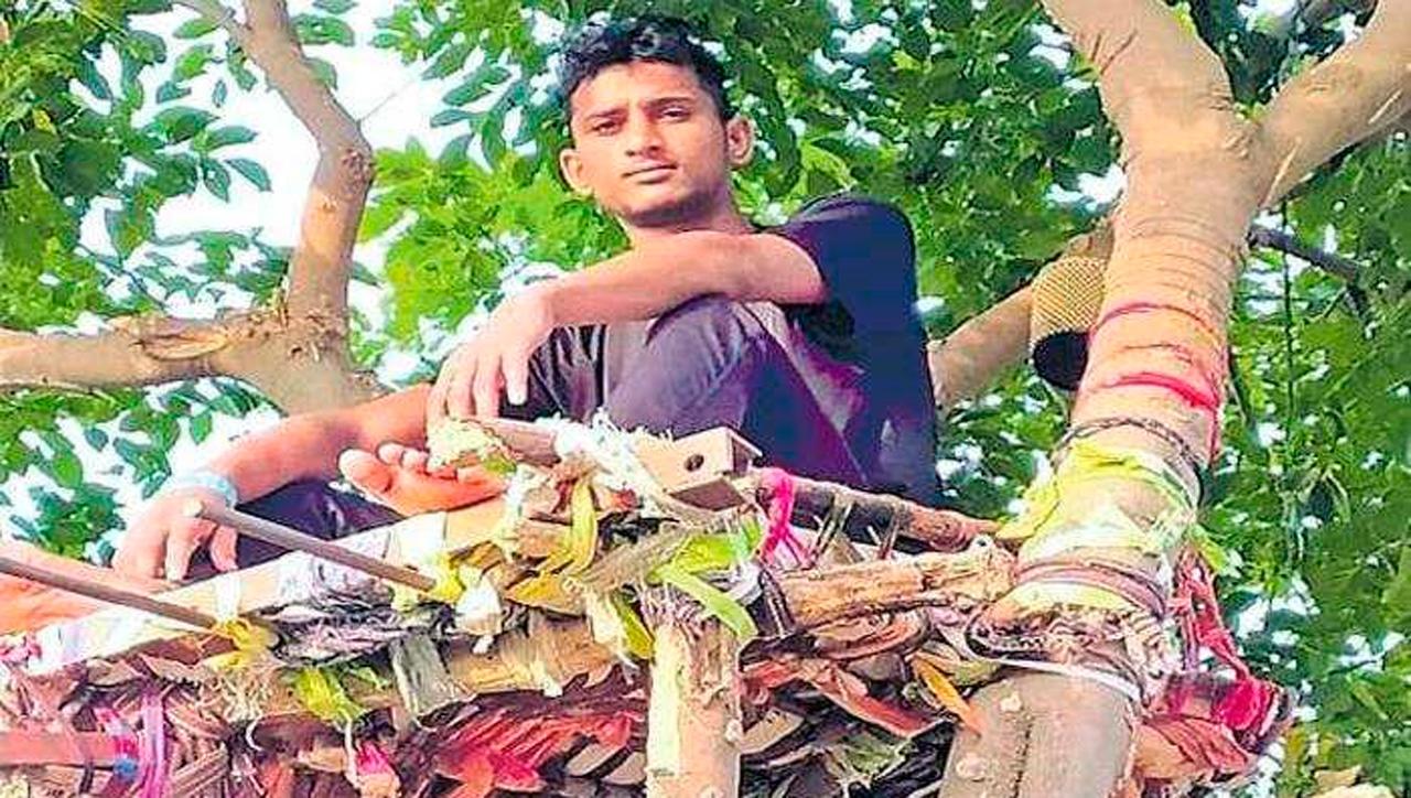 El joven Shiva decidió aislarse en un árbol para no contagiar a su familia de covid