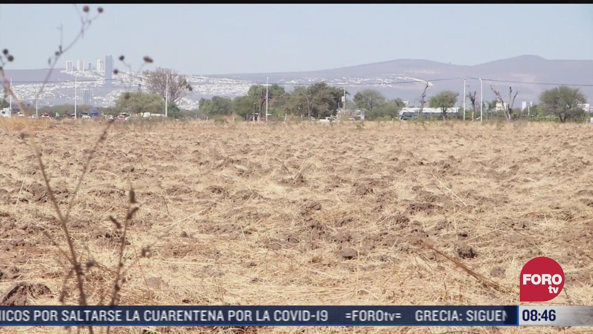 lluvia no ha ayudado a recuperacion de presas en guanajuato