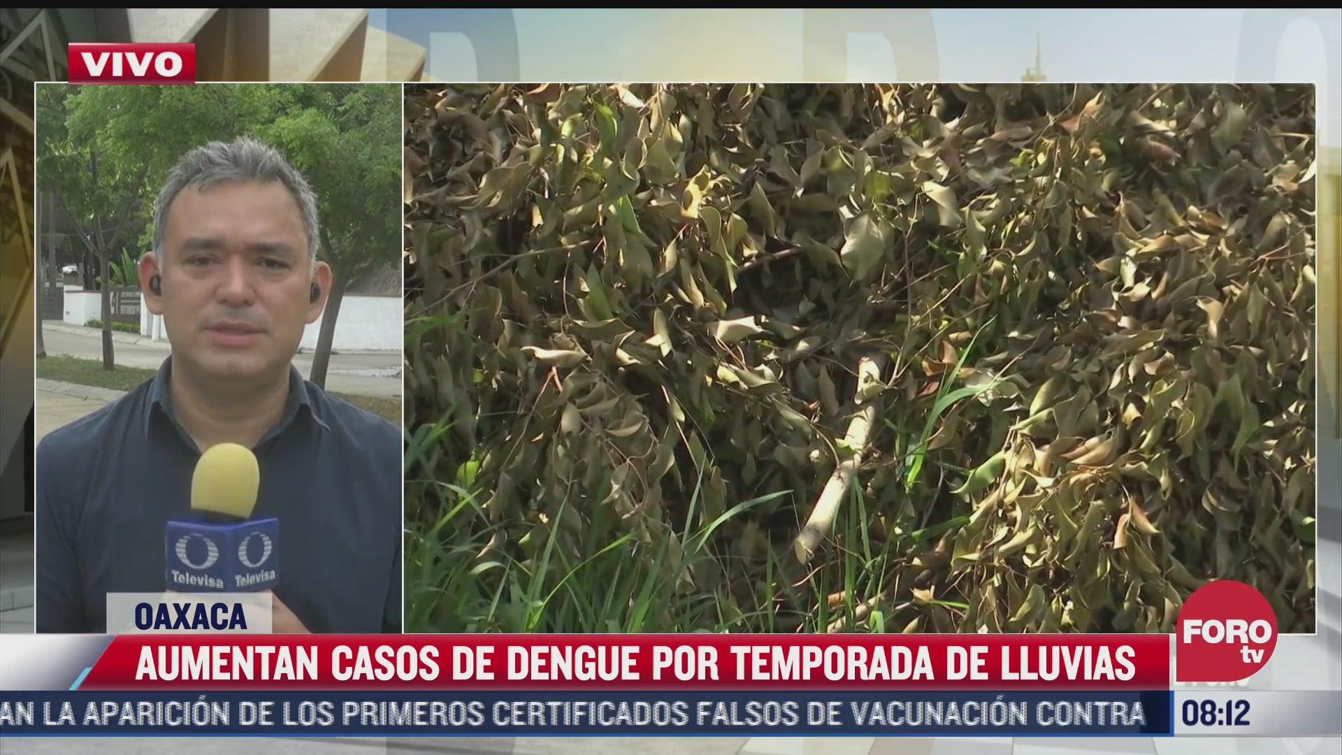 lluvias provocan incremento de casos de dengue en oaxaca