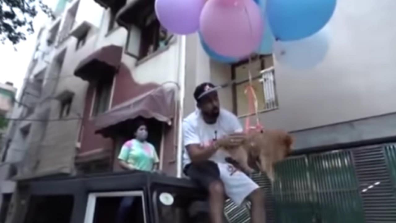Youtuber-amarra-globos-de-hidrógeno-a-su-perrita