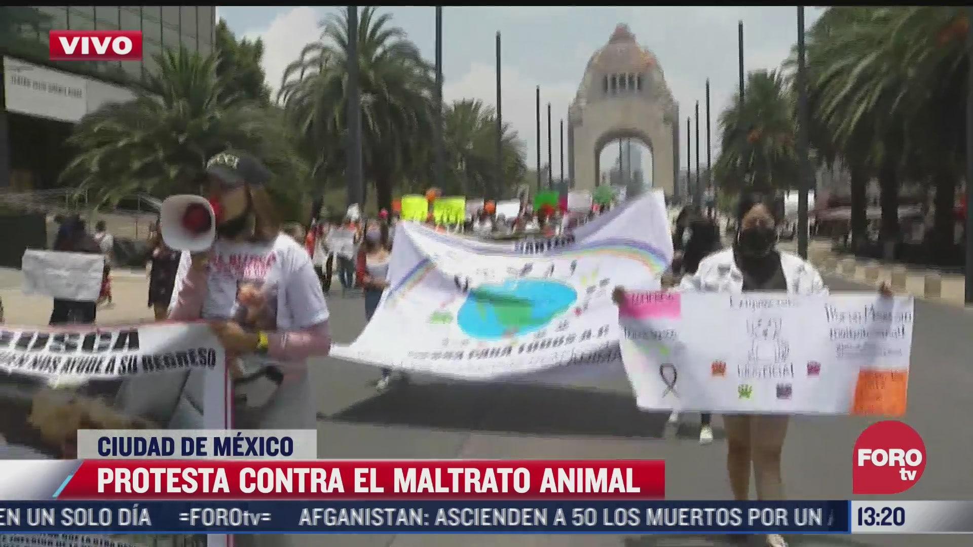 Manifestación contra maltrato animal en la Ciudad de México