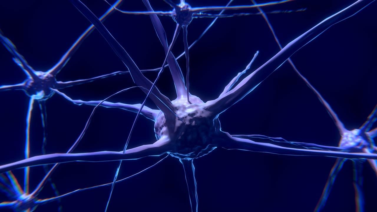 Médicos en Canadá encuentran extraña enfermedad cerebral