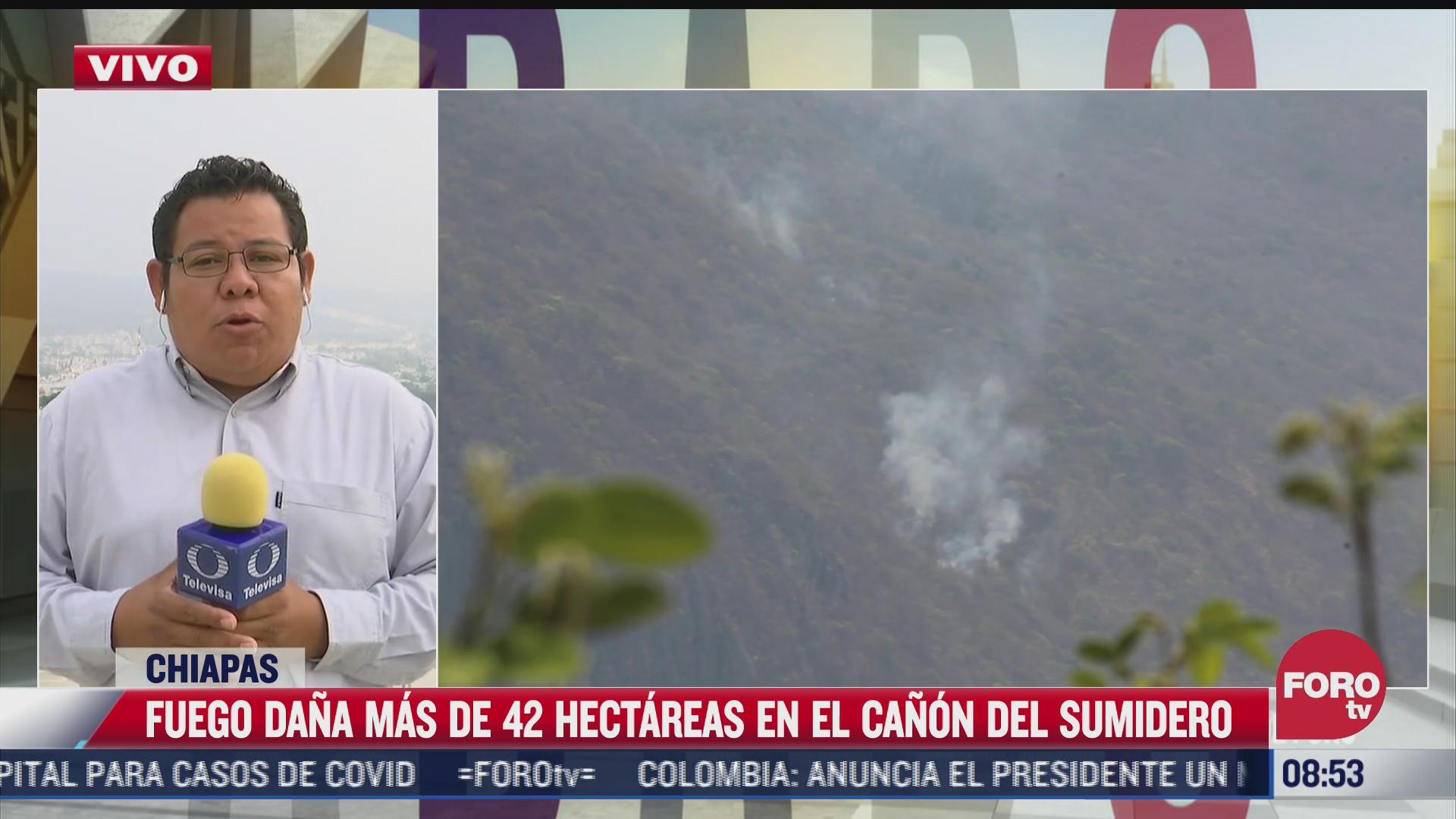 nuevo incendio forestal en canon del sumidero provoca danos en 42 hectareas