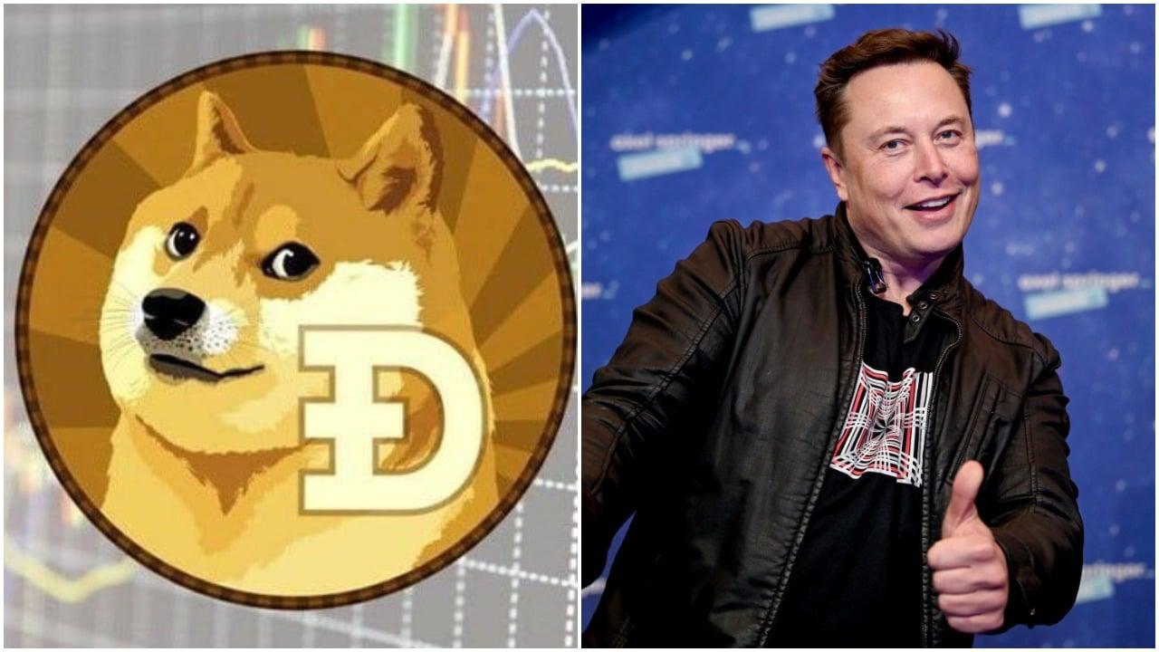 Que es la Dogecoin y por qué aumentó su valor gracias a Elon Musk