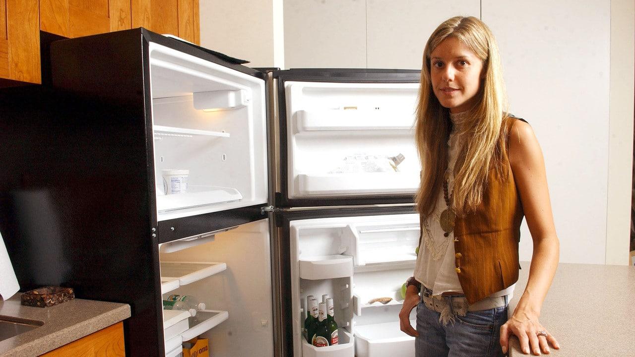 refrigerador, luz, CFE, ahorrar dinero, imagen ilustrativa