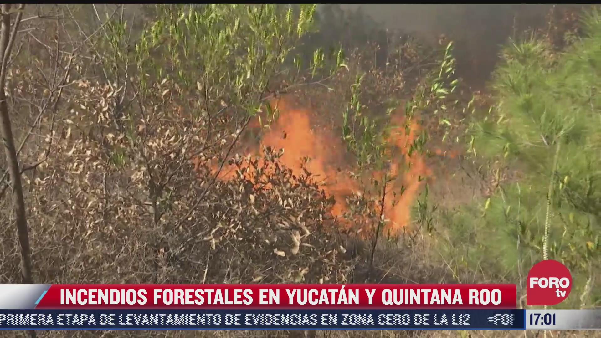 reportan 14 incendios forestales activos en mexico