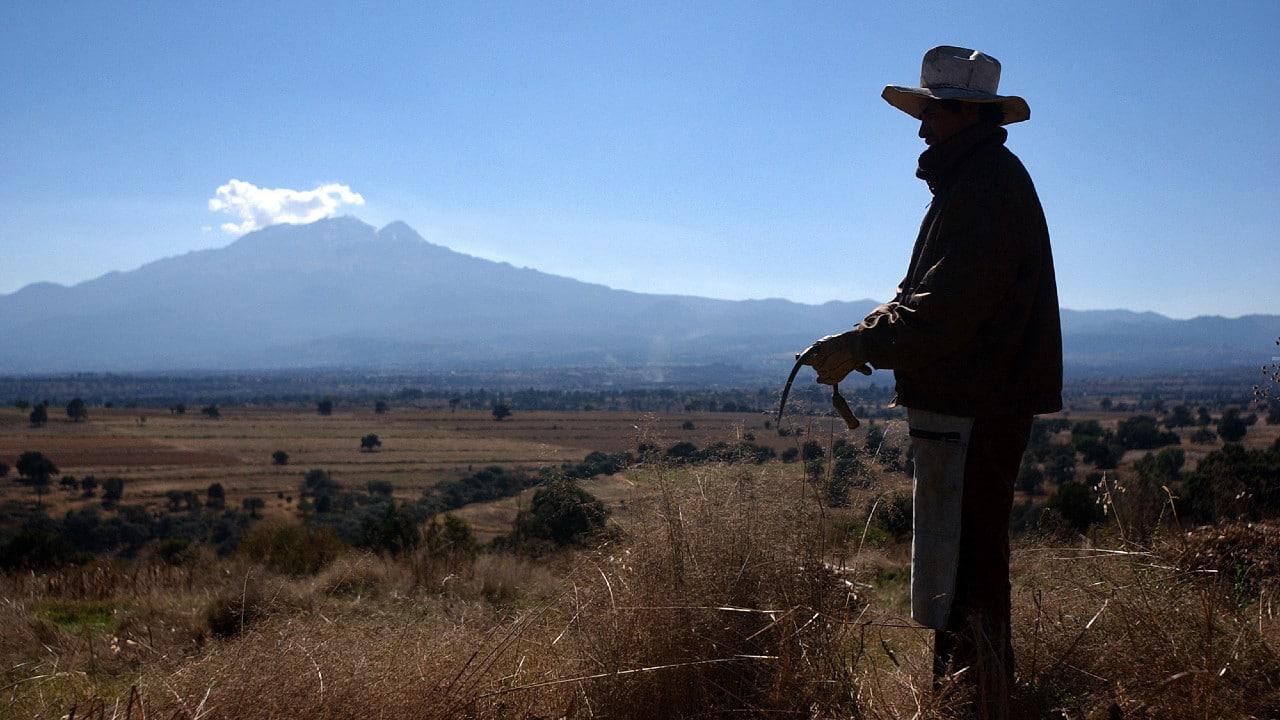 Tlaxcala, política, elecciones, gobernador